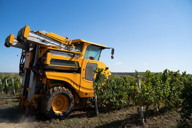 agricultural-grape-harvesting-machine-XV3FE7T.jpg
